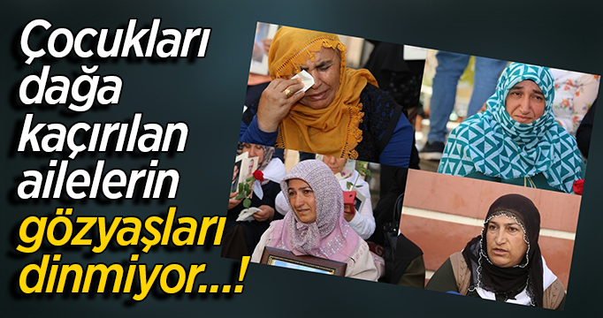 Çocukları dağa kaçırılan ailelerin gözyaşları dinmiyor-VİDEO